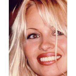 Pamela Anderson : Photo signée