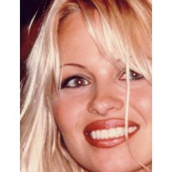 Pamela Anderson : Signed photo